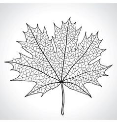 Leaf of a maple nature symbol monochrome vector image