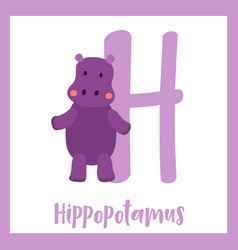 Letter h vocabulary hippopotamus standing on two vector