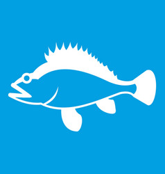 rose fish sebastes norvegicus icon white vector image