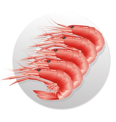 Seafoods vector