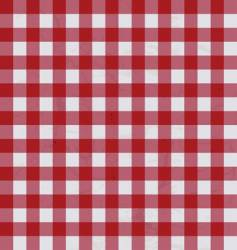 table cloth vector image