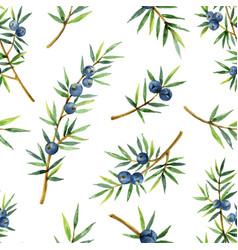 Watercolor seamless pattern plants juniper vector