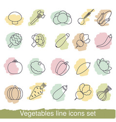 vegetables line icons vegetables line icons vector image