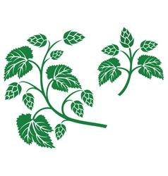 hops leaf design vector image vector image