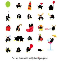Big set of cute penguins vector image