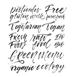 collection of words vegetarian vegan green menu vector image