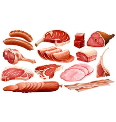 different types of meat products vector image