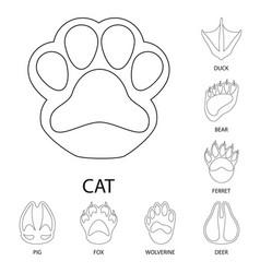 Foot and footprint symbol vector