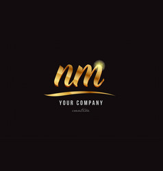 Gold alphabet letter nm n m logo combination icon vector