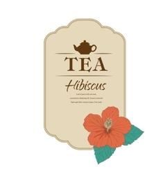 Hibiscus tea carcade vector image