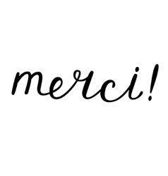 Merci thank you in French Brush hand lettering vector