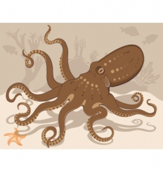 octopus on coral reef vector image