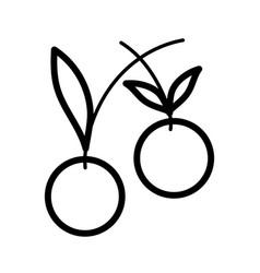 tasty fresh fruit cherry icon on white background vector image