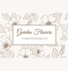 Wild rose garden flowers vintage background brown vector