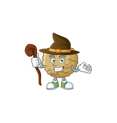 witch fresh marolo fruit character mascot in vector image