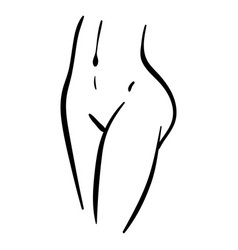 Woman belly and legs line minimal vector