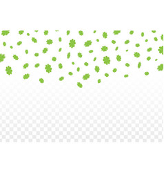 green clover leaves vector image vector image