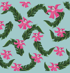hibiscus tropical flower leaves nature vector image vector image
