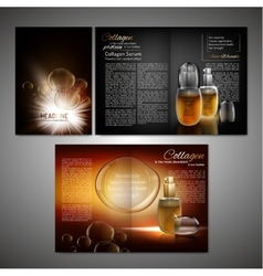 Brochure Template Image vector image