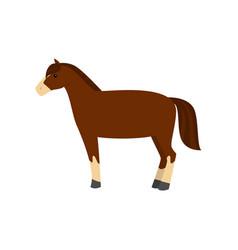 cute beautiful cartoon horse graceful horse an vector image