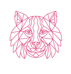 Lynx bobcat head mono line vector