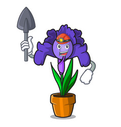 Miner iris flower mascot cartoon vector