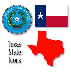 Texas state icons vector