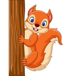 Cartoon cute squirrel climbing on a tree vector