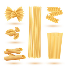 Isolated set italian pasta farfalle conchiglie vector