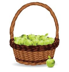 Basket of Green Apples3 vector image