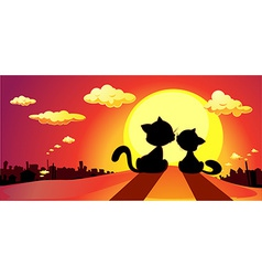 cats in love silhouette in sunset vector image