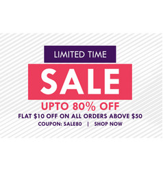 flat sale banner design with offer details vector image