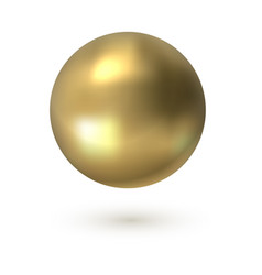 golden circle realistic 3d sphere smooth surface vector image