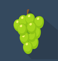 Grapes cartoon flat icondark blue background vector