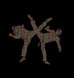 taekwondo fighting vector image