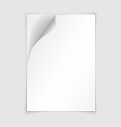 white realistic paper page with curled corner vector image