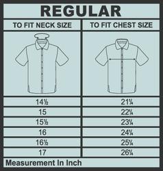 Men shirt regular size vector image vector image