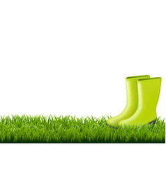 Gumboot with green grass border vector