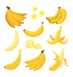 banana fruit set healthy tropical yellow food vector image