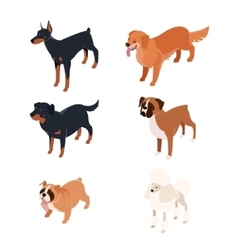 collection isometric dogs1 vector image