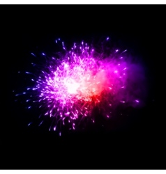 Colorful fireworks in the night sky vector image