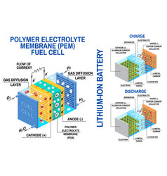 Fuel cell and li-ion battery diagram vector