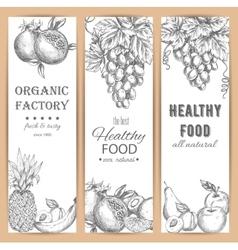 Garden fruit banners agriculture sketch vector
