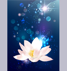 Lotus esoteric banner vector