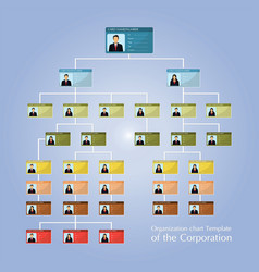 organizational corporate flow chart template of vector image