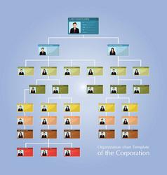 Organizational corporate flow chart template of vector
