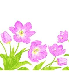 Tulips bouquet seamless border composition vector image