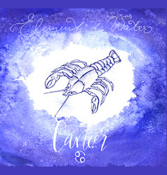 Astrology sign cancer vector