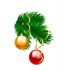 Baubles and fir branch vector