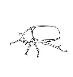 big bug outline sketch hand drawn art vector image